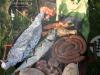 mackerel-grill-2